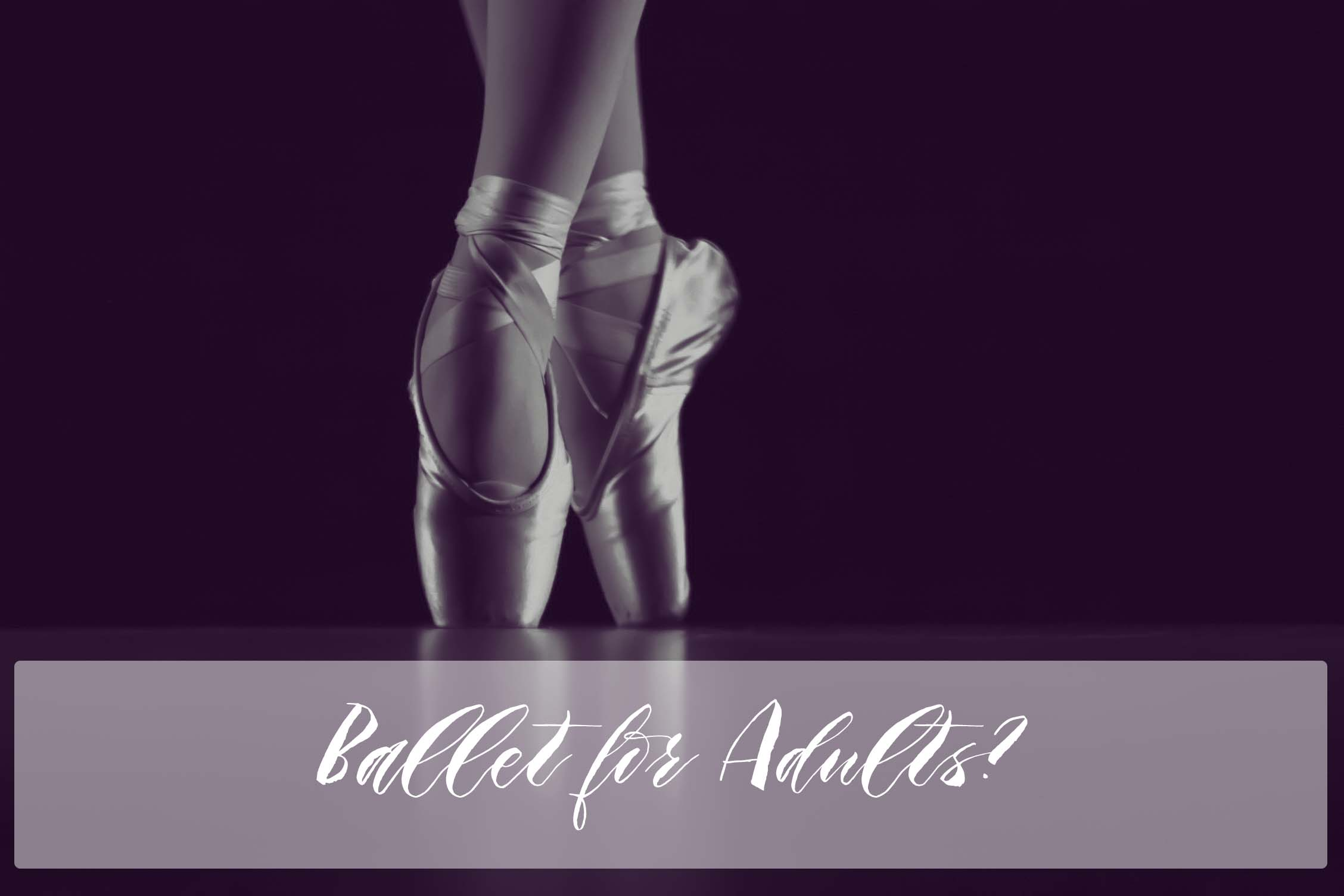 ballet slippers copy